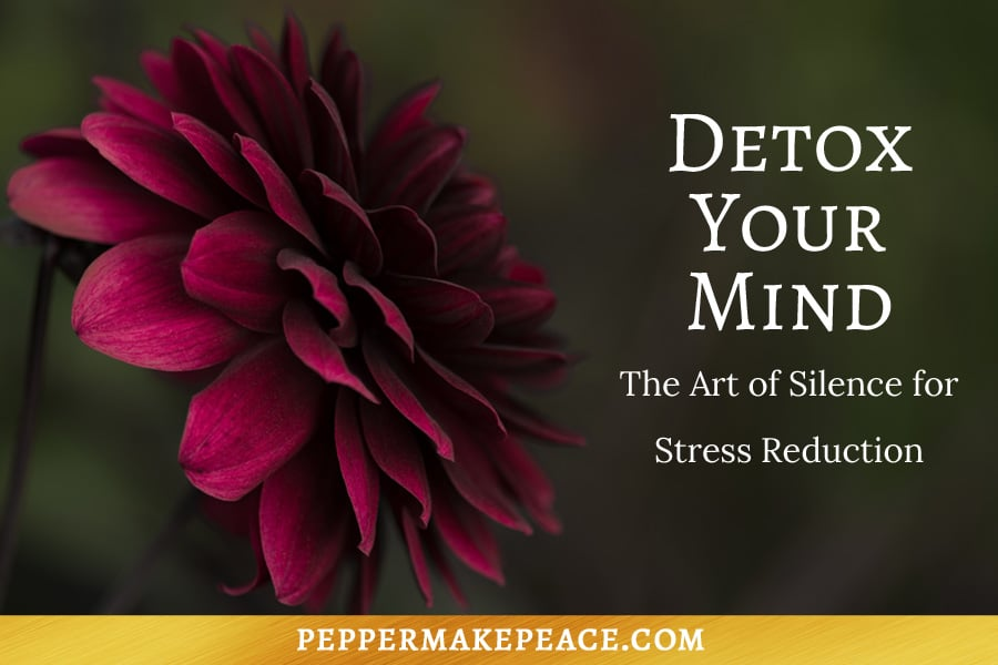 Detox Your Mind Art of Silence