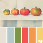TomatoTones_3